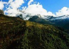 达美拥雪山