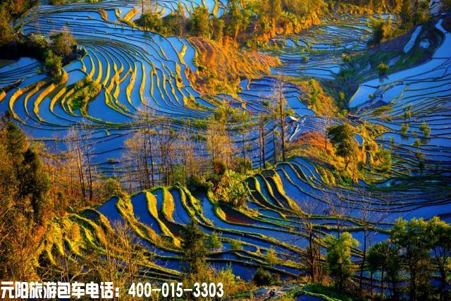 元阳梯田最佳旅游摄影时间和最佳季节拍摄点 云南元阳梯田旅游攻略