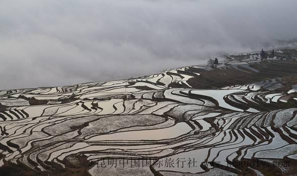 云南元阳旅游图片攻略